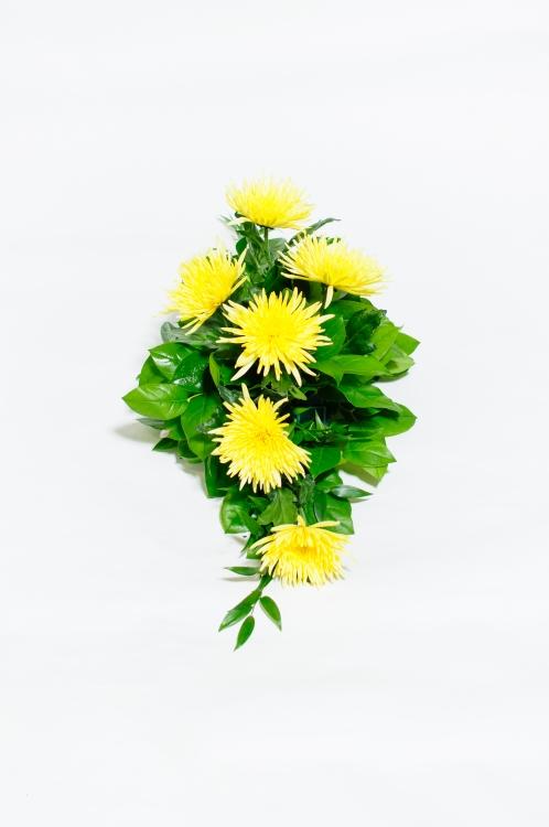 Kytice na rakev - jehlicovité chryzantémy, orientační cena - 850Kč