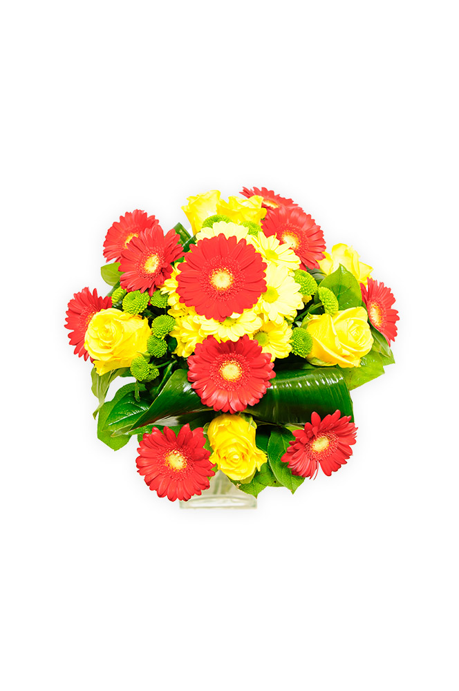 Červené gerbery s růžemi