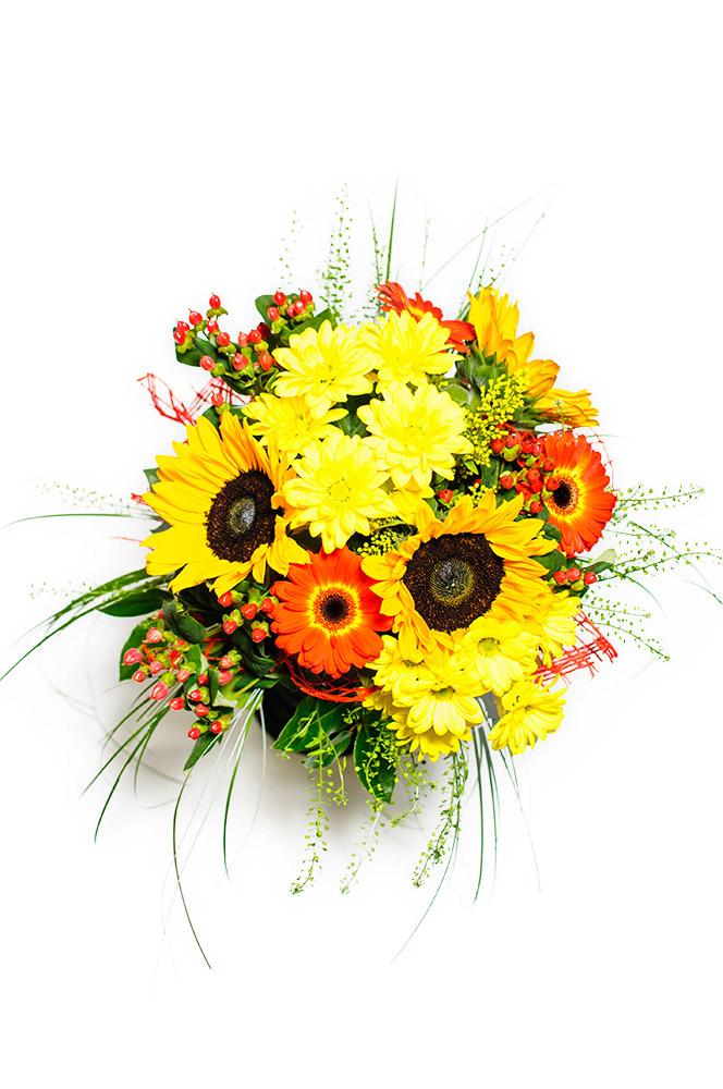 Slunečnice, gerbery a kopretiny