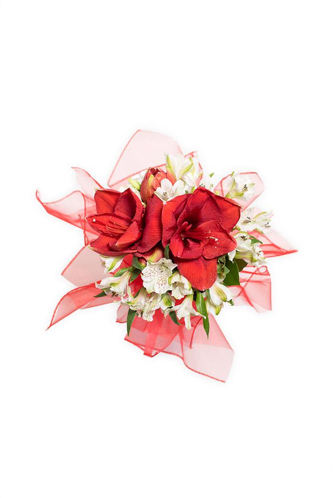 Rudý amaryllis a alstromerie