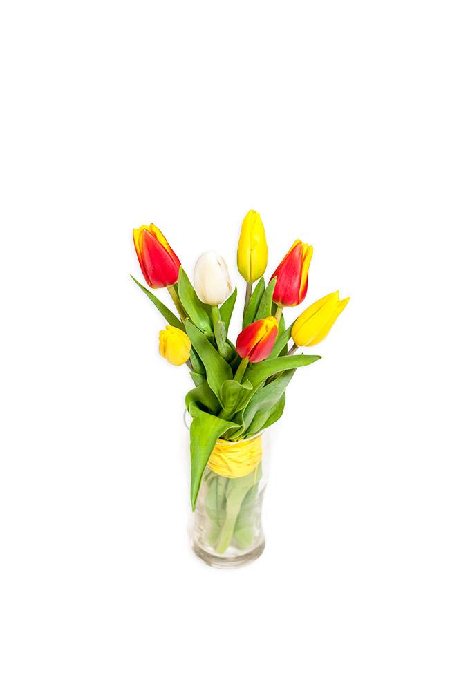 Mix čerstvých tulipánů
