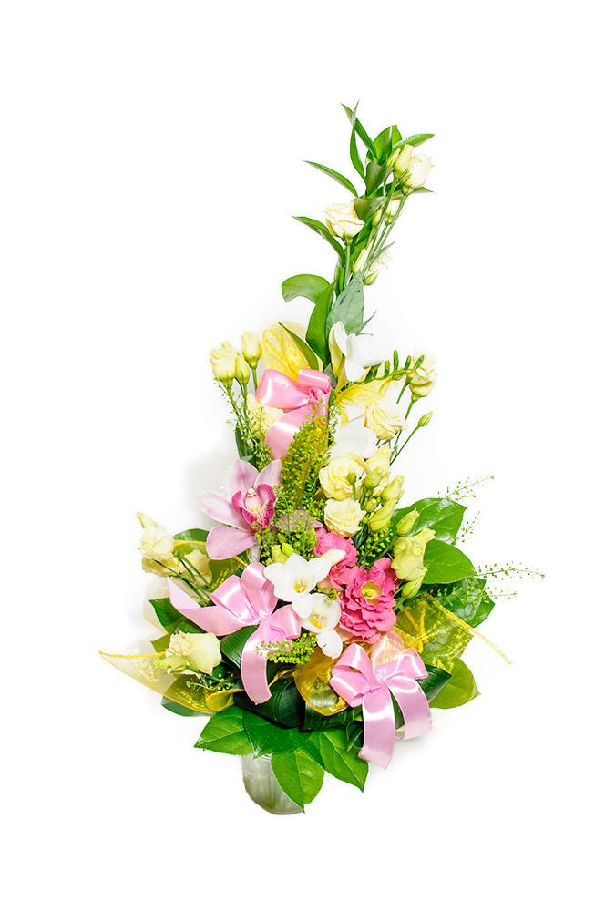 Eustomy a orchidej