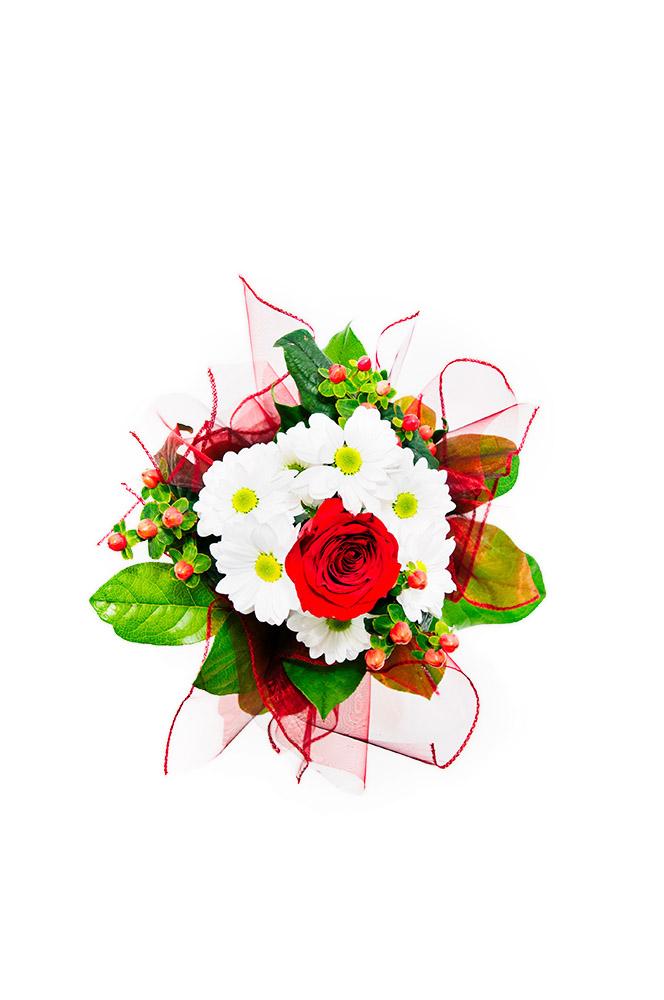 Kopretiny s rudou růží