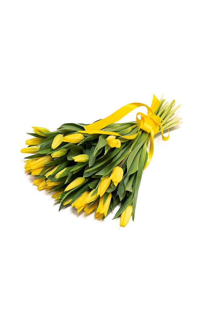 30 čerstvých ŽLUTÝCH tulipánů
