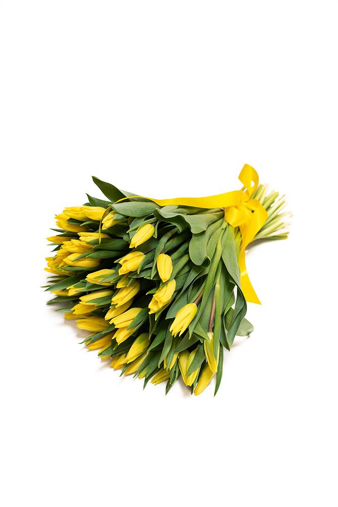 50 čerstvých ŽLUTÝCH tulipánů