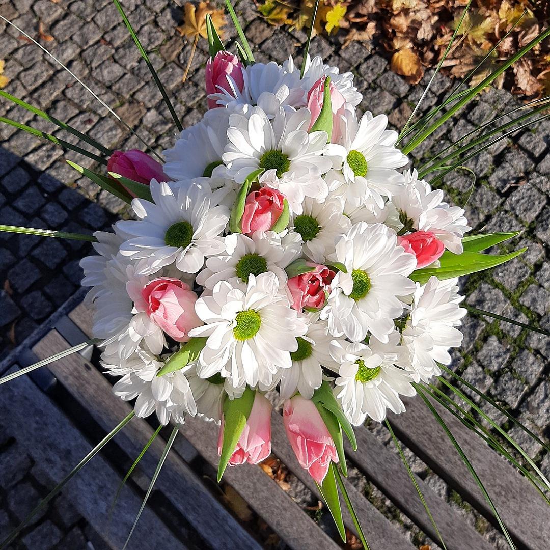 Jarní kopretiny s tulipány