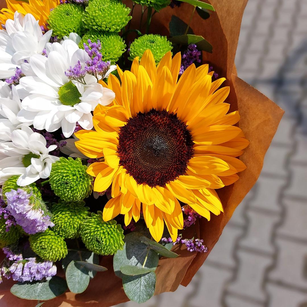 Slunečnice, santini a chryzantéma