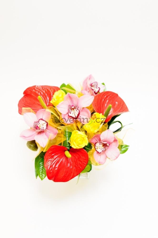 Anthurium, orchideje a trsové růže