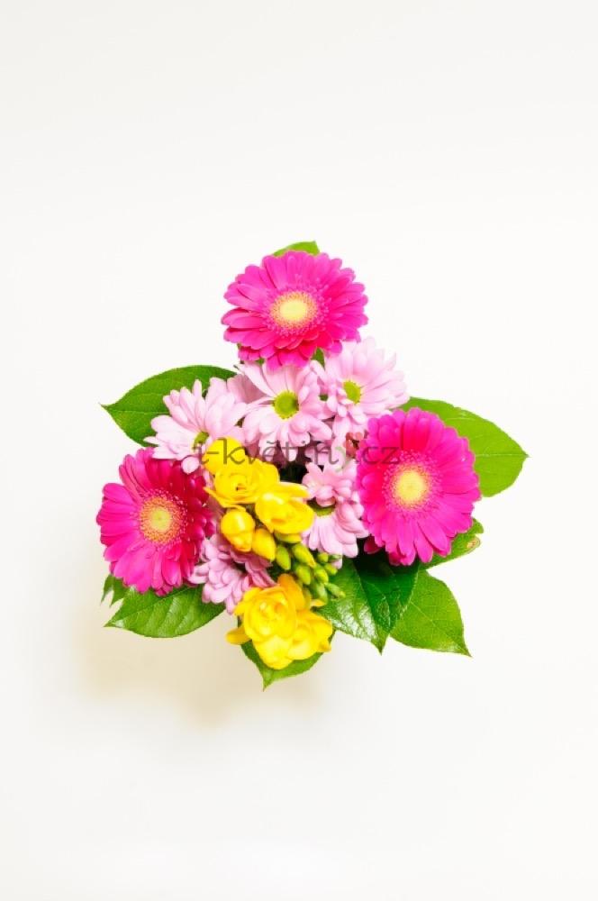 Gerbery v růžových odstínech