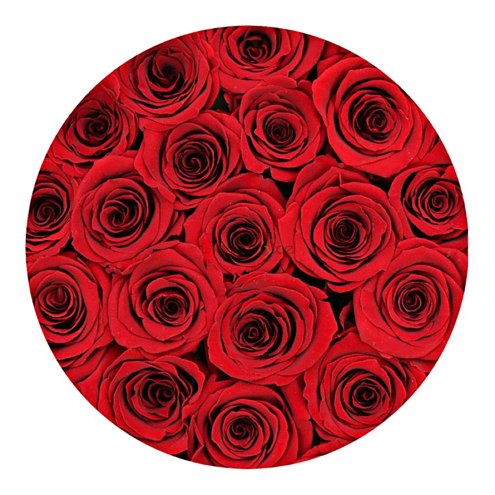 Červené růže v BÍLÉM boxu