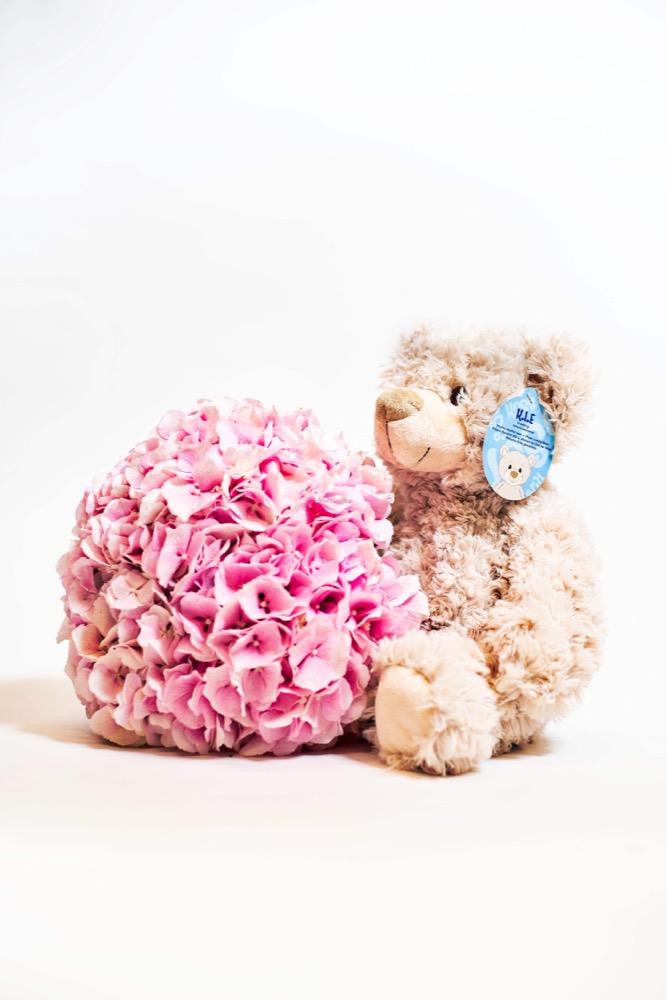 3 hortenzie + Plyšový medvídek