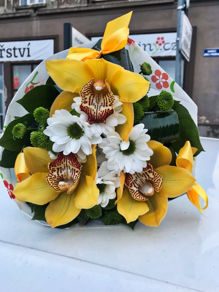 Orchideje, santini a kopretiny