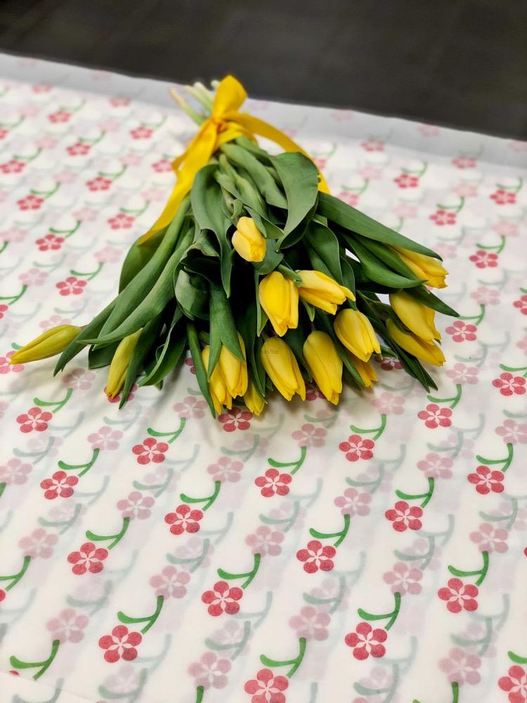 15 čerstvých ŽLUTÝCH tulipánů