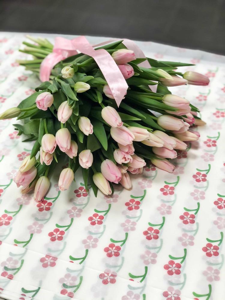 50 čerstvých RŮŽOVÝCH tulipánů