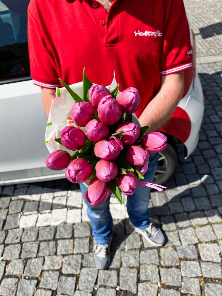 15 čerstvých RŮŽOVÝCH tulipánů